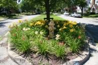 Arlington pocket garden 2